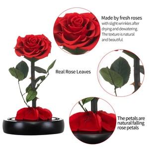 Image 3 - 2020 아름다움과 야수 신선한 꽃 발렌타인 데이 유리 돔에 빛으로 빨간 영원한 장미 크리스마스 선물 Dropshiping