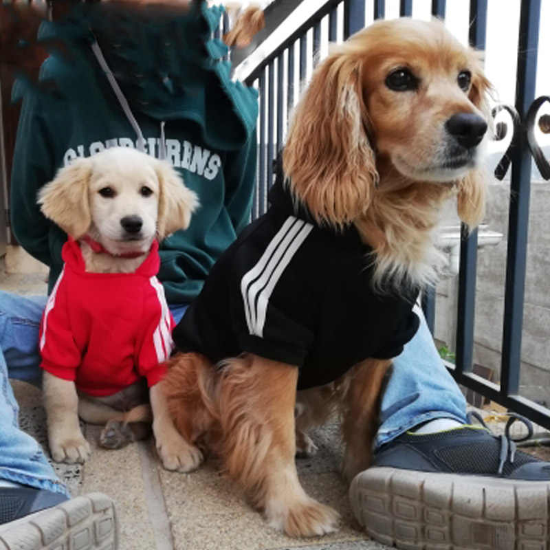 Güvenlik köpek giysileri klasik Pet köpek Hoodies giysileri büyük köpek için sonbahar ceket ceket Chihuahua için Retriever Labrador giyim