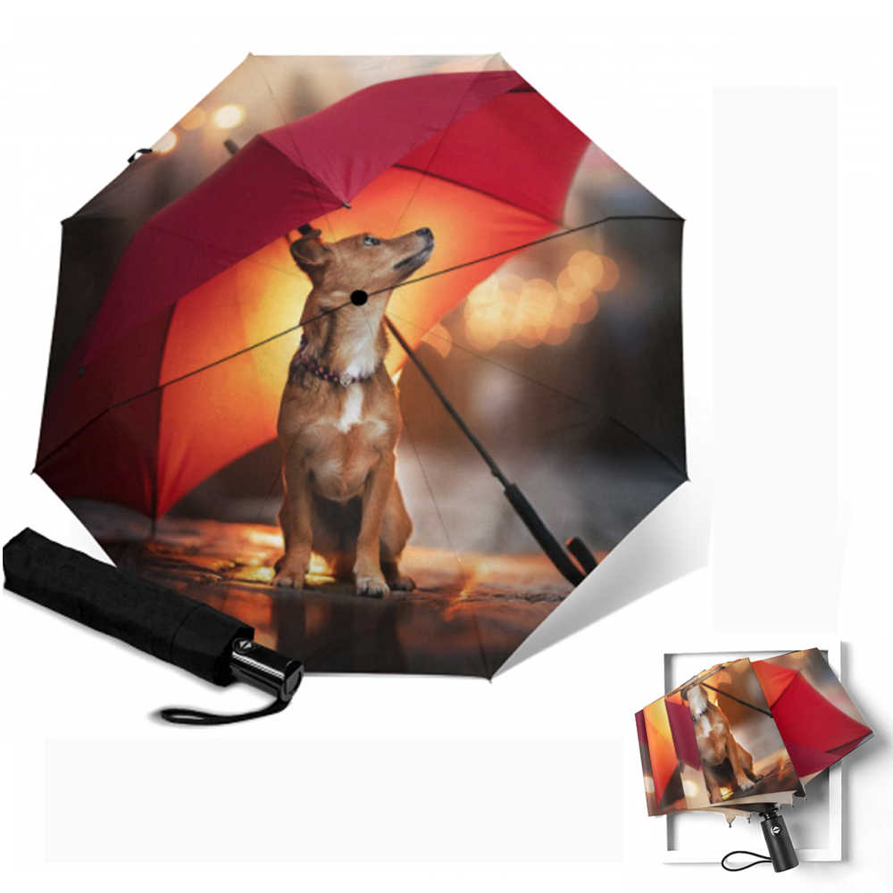 Funny Dogs And Cats Garden Party Umbrella Auto Open And Close Sun UV Protection Waterproof Foldable Compact Windproof Parasol Automatic Rain Umbrellas