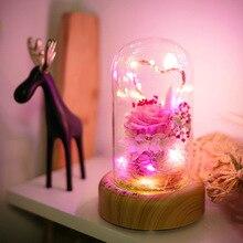 Fashion Flower Night Lights Glass Lampshade Led Light  Desk Lamps USB Bedroom Night Light Nice Gift for Kids