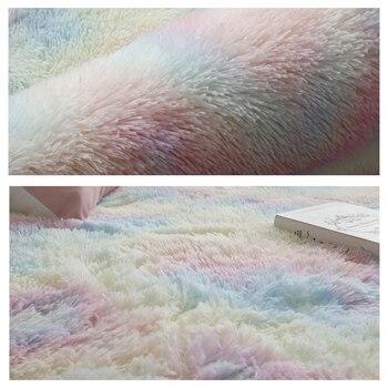 Soft Plush Carpet for Living Room 2