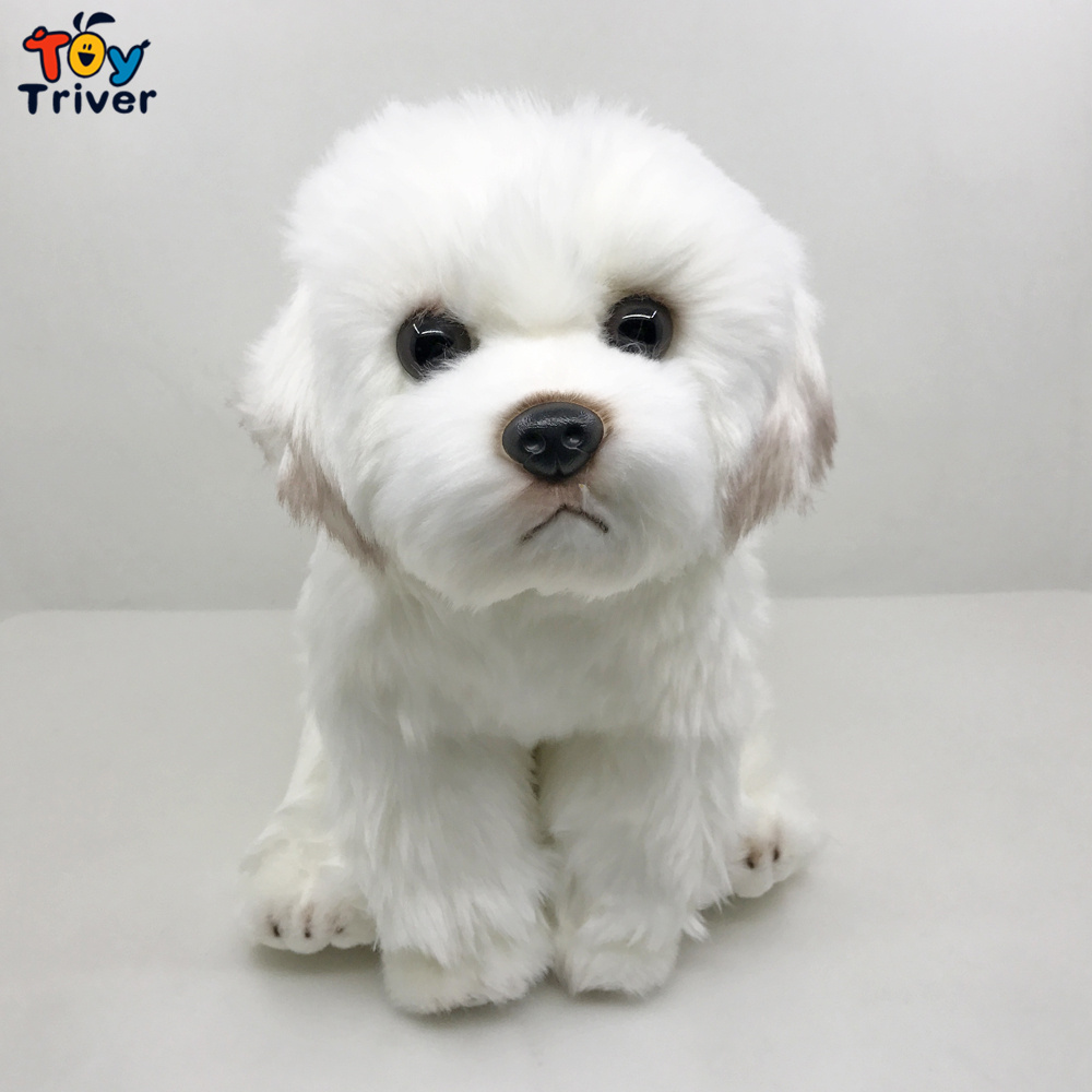 Lifelike Maltese Dog Malta Puppy Plush Toy Triver Stuffed Animals Doll Baby Kids Children Boy Birthday Gift Home Decorations