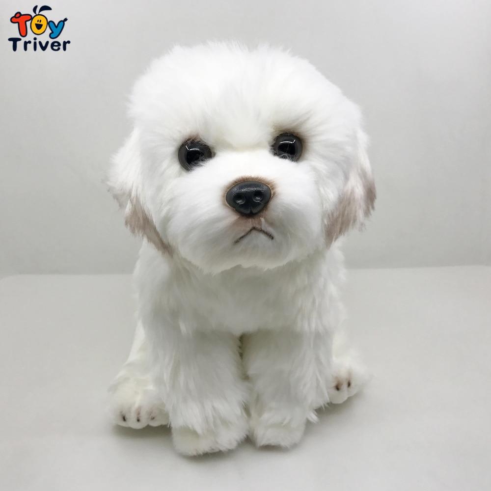 Lifelike Maltese Dog Malta Puppy Plush Toy Triver Stuffed Animals Doll Baby Kids Children Boy Birthday Gift Home Decorations