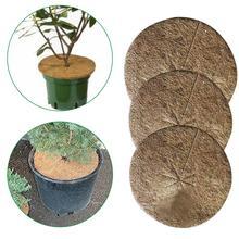 10 sztuk rośliny pokrywa roślina doniczkowa s ochrona zimowa kokosowa ściółka pokrywa wycieraczka kokosowa do ogrodu roślina doniczkowa botanika utrzymać ciepło DH tanie tanio CN (pochodzenie) Other
