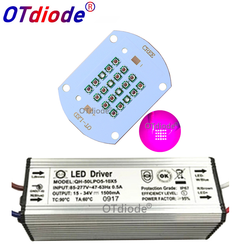 Hydroponice CREE 50W 60W COB Led Grow Light Chip XPE Deep Red 660nm Royal Blue 450nm For Indoor Plant Seedling Grow And Flower