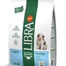 Libra Dog Puppy Frango