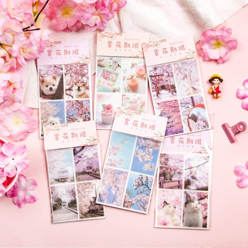 5 Pcs/pack Cherry Appreciation Series Bullet Journal Decorative Stickers Scrapbooking Stick Label Diary Stationery Album Sticker