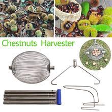 Chestnuts Harvester Walnuts Roller…