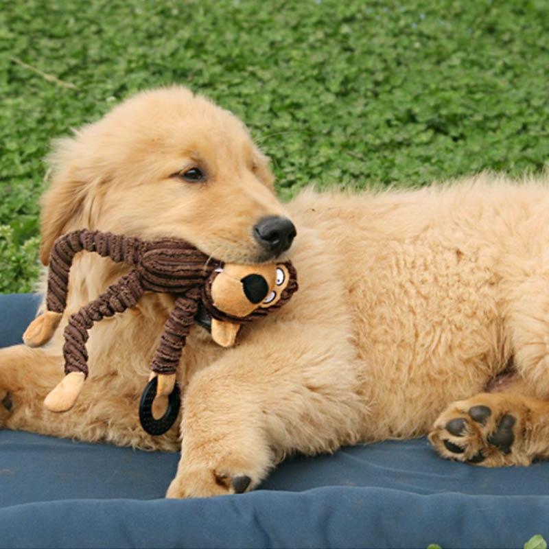 Чистки зубов скрипучий интерактивные игрушки мультфильм животное, фламинго, в форме хлопковая верёвка собачья игрушка товары для дрессировки домашних животных жевательные игрушки для питомцев 1 шт.-4