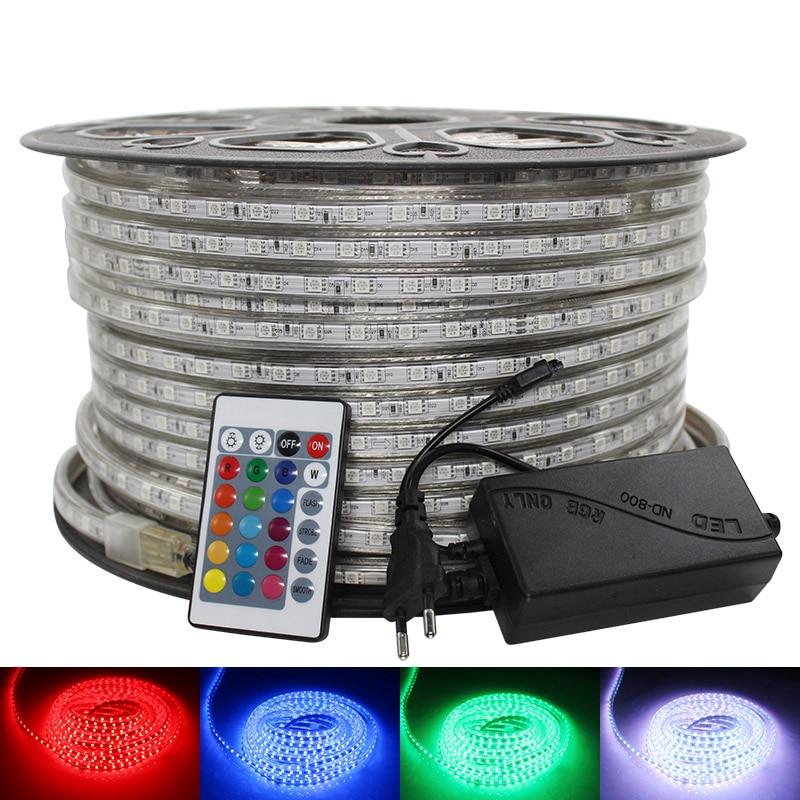 SMD 5050 AC 220V LED Strip Waterproof White Led Tape Warm White Blue Led Strip 220v Rgb Led Strip Dimmable Led Light 50m 100m