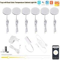 Atenuador de Control Wifi para el hogar, lámpara LED de doble Color, Blanco cálido, CC de 12V, CCT, para Alexa y Google Home