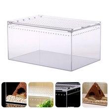 Nido de reptiles acrílico duradero, caja de alimentación práctica, suministros para reptiles, nido para cría de árboles, Rana, lagarto, camaleón, 1 unidad