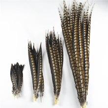 Plumes de faisan naturelles pour dame Amherst, plumes pour artisanat, accessoires de carnaval, plumes de décoration, 10-120CM, 4-48 pouces, 10 pièces/lot