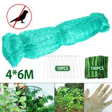 4x6M siatki przeciw ptakom plastikowe staw owoce drzewo warzywa ochrona netto rośliny kwiat siatka ogrodowa chroń narzędzie kontroli szkodników netto tanie tanio polyethylene and net Fruit Tree Protection Net green 4 * 6M 18 5 * 3 5 * 6cm