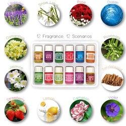 12 бутылок 3 мл эфирные масла для спа-растений с ароматическим ароматерапевтическим маслом бытовые товары для ежедневного использования аро...