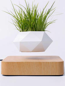 Planters Pot Desk-Decor Flower-Floating-Pot Levitation-Suspension Air-Bonsai Rotation