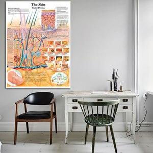 Плакаты с анатомическим разделением кожи, ламинированные настенные картины с принтом на холсте для медицинского образования, украшение для дома
