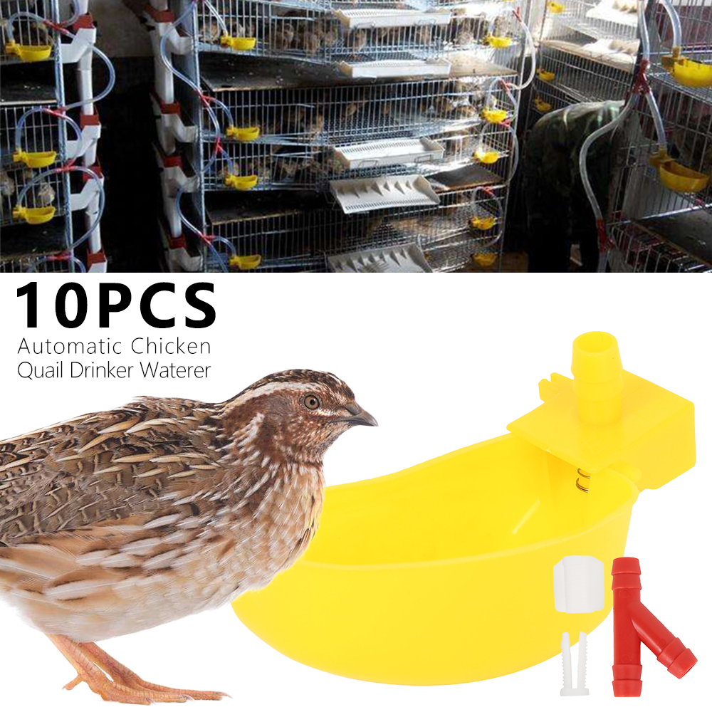10 Pcs Automatic Quail Drinker Chicken Waterer Bowl Bird Drinker Hanging Cups Chicken Quail Bird Suspension Drinking Fountain