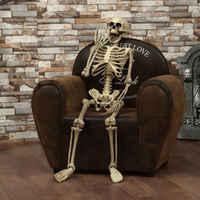 Halloween Prop decoración esqueleto tamaño completo cráneo mano vida cuerpo anatomía modelo Decoración