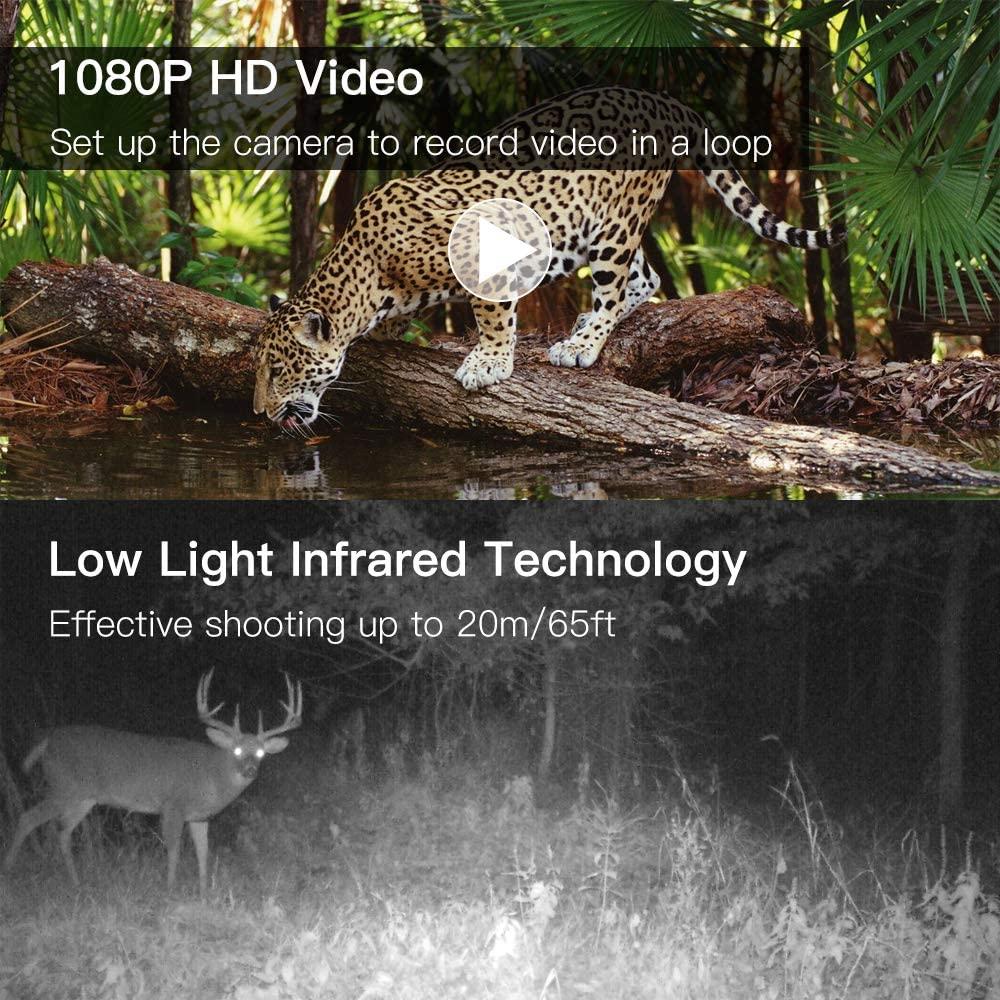 H19e09e608bcf4fcb8619fd9437a6ccb4S - 16MP 1080P Mini Trail Photo-traps IP66 Hunting Camera Game Trail Camera Outdoor Wildlife Scout Guard Wildcamera with PIR Sensor