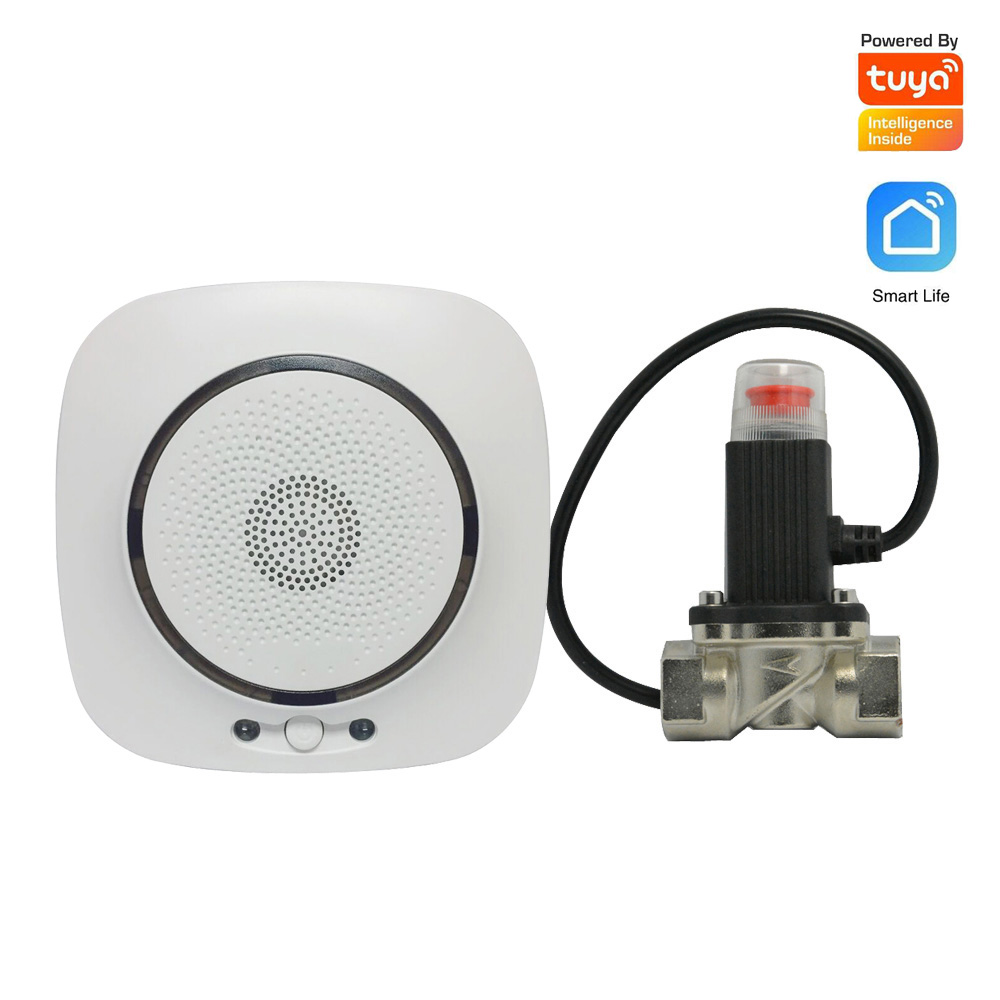 Security Fire Alarm Natural Gas Leakage Sensor TUYA WIFI Smart Life APPs Kitchen Coal Gas Detector DN15 Valve EU Plug