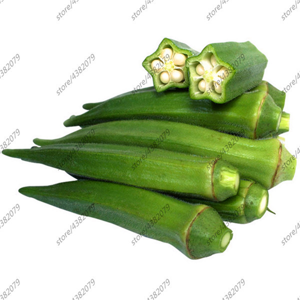100pcs Okra Plants Very Meaty Health Vegetable Hibiscus Esculentus Organic Green Vegetable For Home Garden