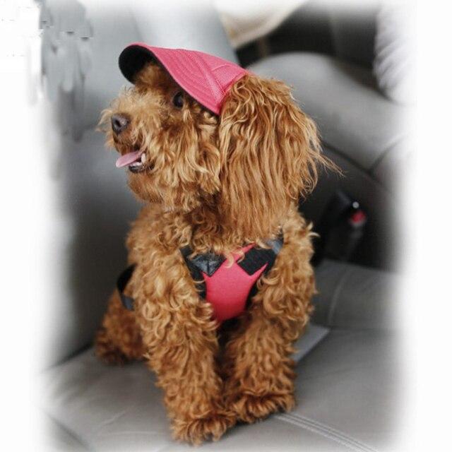 Windproof Dog Caps 5