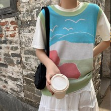 2019 Autumn Women Print Sweater Vest Sleeveless O-Neck Knitted Female Casual Oversize Pullover