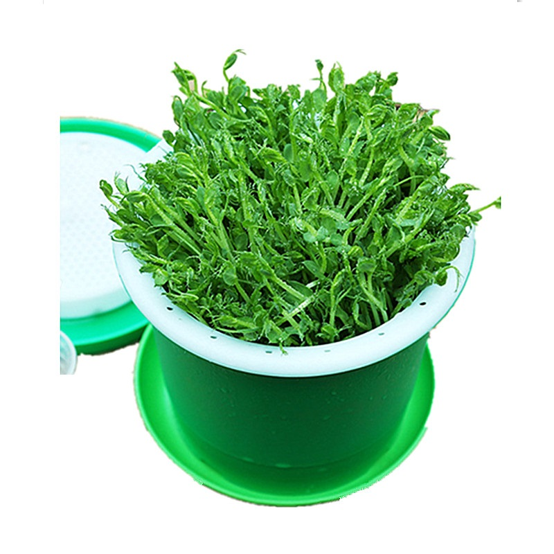 Household Bean Sprouts Making Pot Bean Sprouts Cans Sprouts Planting Barrels High Quality Bean Sprouts Breeding Pot