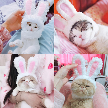 Cat Bunny Headgear Dog Teddy Bichon Transformed Hat Garfield Bunny Ears Pet Headdress Pet Costume Role-playing Props Supplies image
