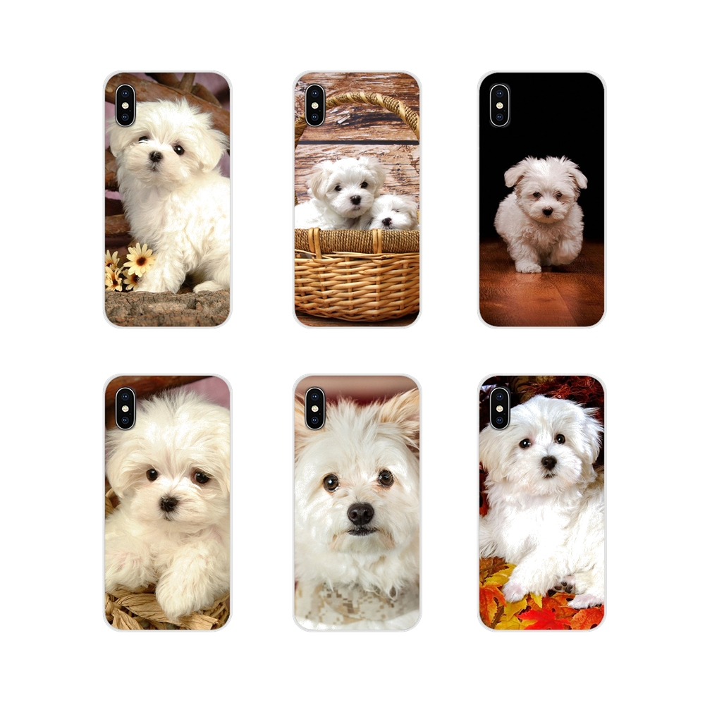 Accessories Phone <font><b>Cases</b></font> cute white maltese <font><b>dog</b></font> puppies For <font><b>Samsung</b></font> Galaxy J1 J2 J3 J4 J5 J6 <font><b>J7</b></font> J8 Plus 2018 Prime 2015 2016 2017 image