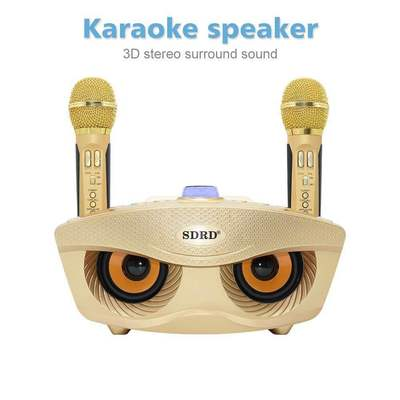 SD306 tragbare hause karaoke system zwei drahtlose mikrofone mit 20 watt stereo bluetooth lautsprecher kondensator karaoke mikrofon