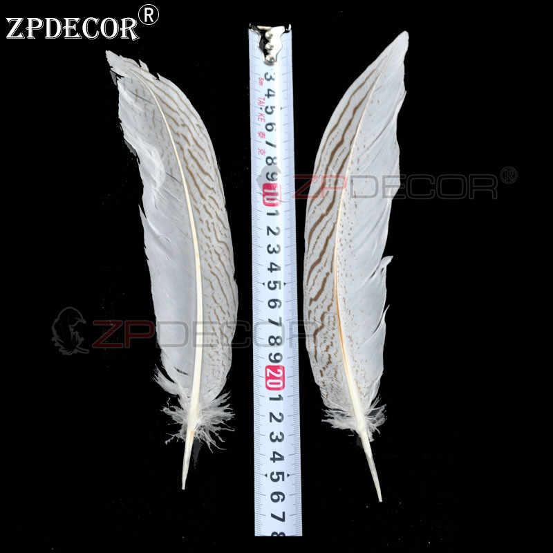ZPDECOR 20-25 cm plumes de queue de faisan argenté pour l'artisanat