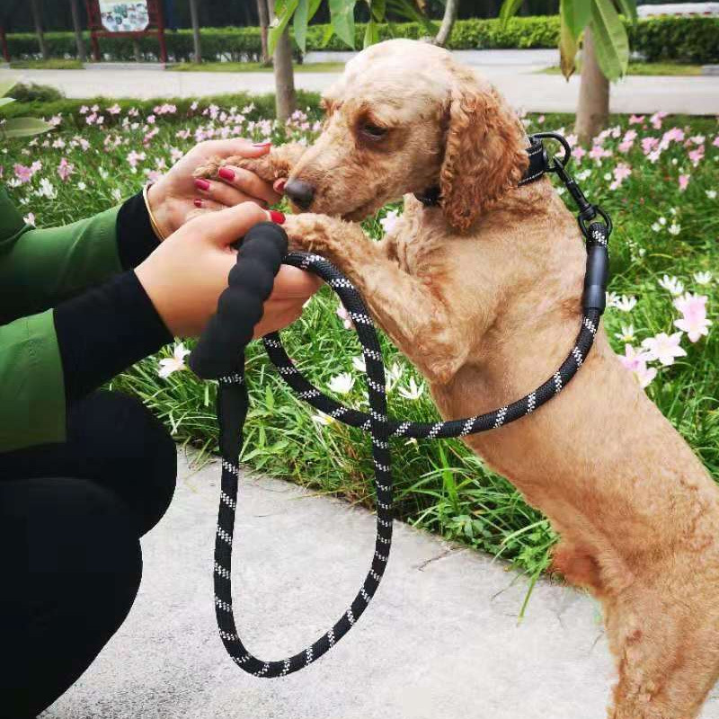 Pet Neck Ring Hand Holding Rope Set Pet Dog Traction Collar Pet Supplies Hot Goods