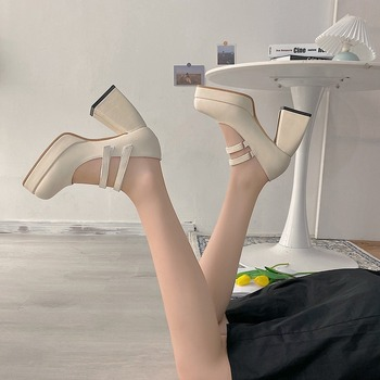 2020 new spring autumn casual high-heeled shoes sexy ruslana korshunova thick heels platform pumps Black White B815