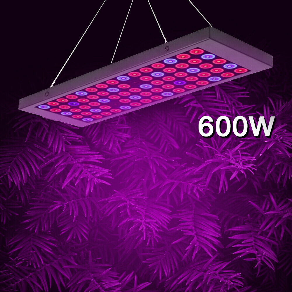 600W LED Grow Light Full Spectrum Plant Lighting LED Growing Lamp For Hydroponic Systems Indoor Veg Flower Plant Lamp Chandelier