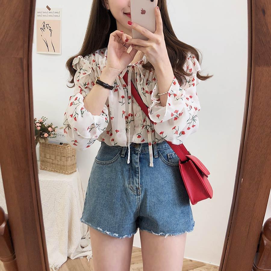 H1a719a34cdff4598b64224fe9f4259d9L - Spring / Autumn Lace-Up Collar Long Sleeves Floral Print Blouse