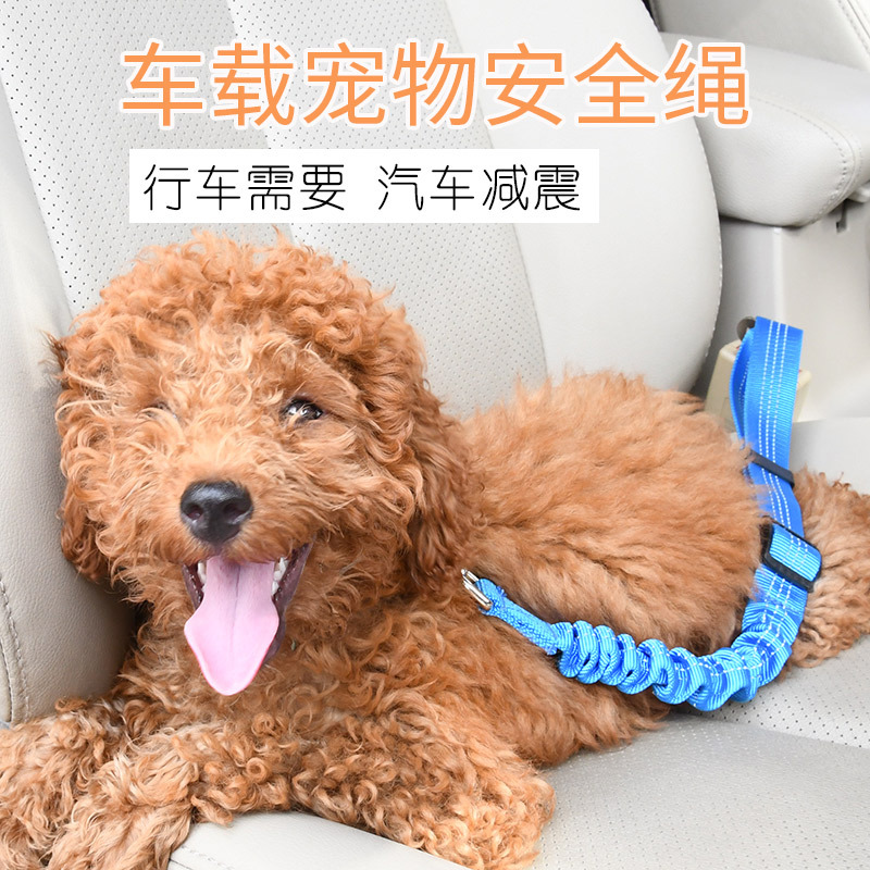 Pet Supplies Car Mounted Safety Belt Dog Traction Safety Belt Buffer Elasticity Reflective Safety Rope Hand Holding Rope