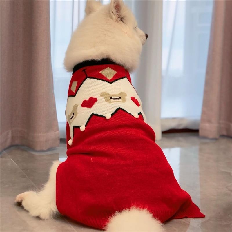 big dogs sweater winter (7)