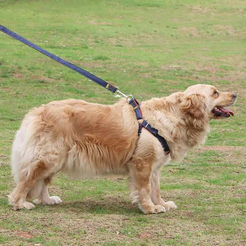 Anjing Kerah Mengarah Adjustable Denim Nilon Hewan Peliharaan Kerah Hewan Peliharaan Anjing Kecil Menengah Besar Anjing Perlengkapan Memanfaatkan Anjing Aksesoris TSLM2