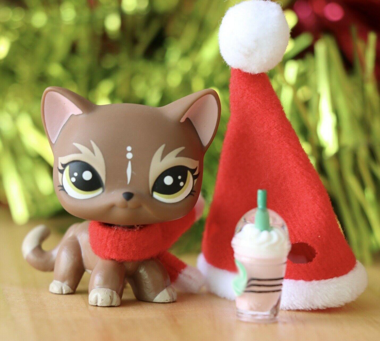 Pet Shop Elk Brown Short Hair Cat Custom OOAK With Accessories Hat
