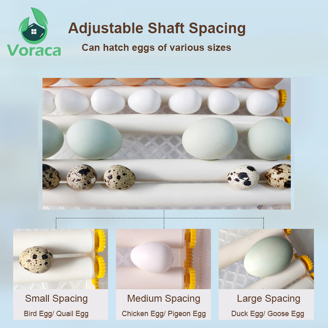 120 Eggs Incubator Brooder Quail Bird Incubator Chick Hatchery Poultry Tool Hatcher Turner Automatic Farm Incubation Tools 3