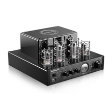 Nobsound MS-10D MS-10DMKII HiFi 2.0 Home Audio Tube Amplifie