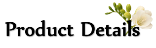 微信图片_202010231623351