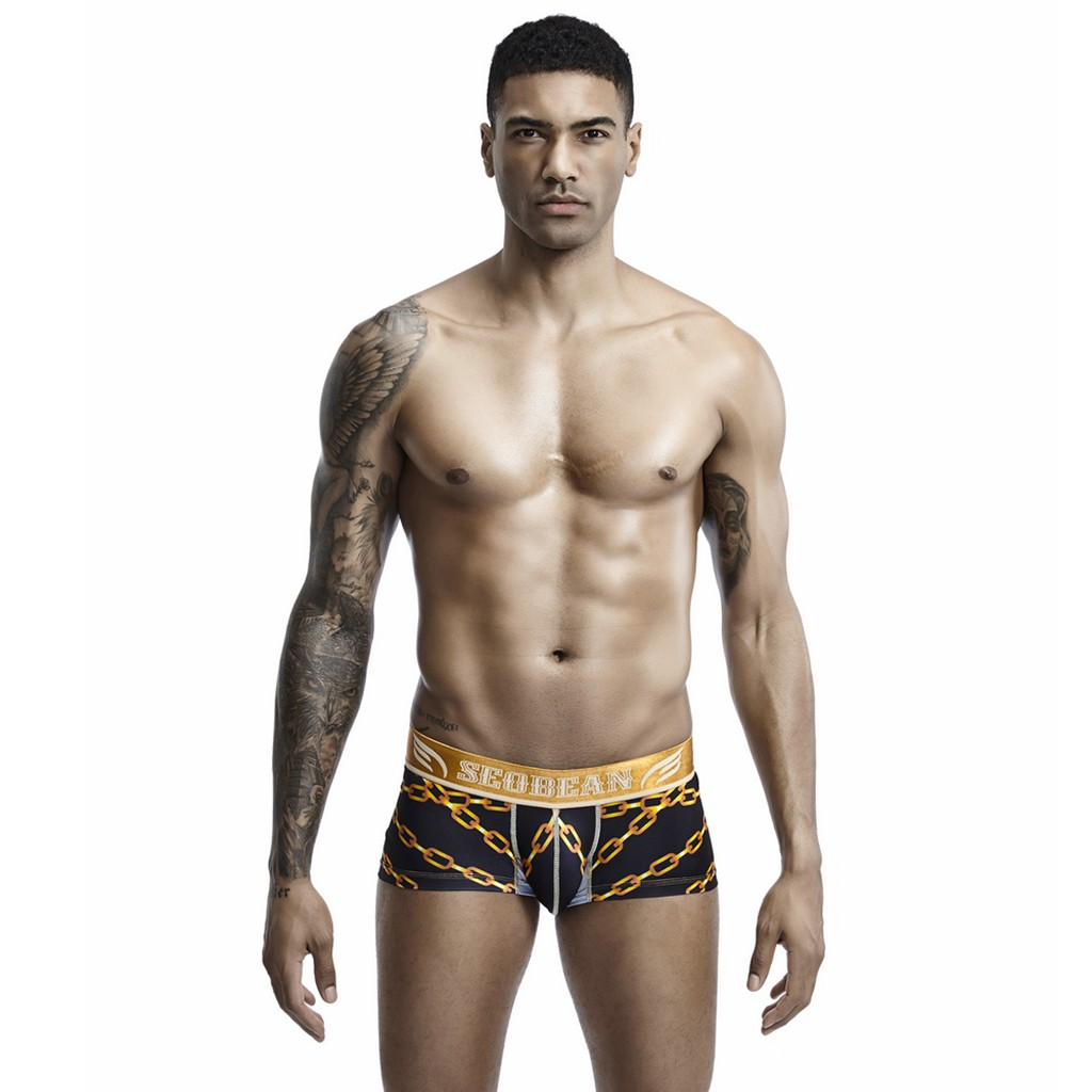 Men's underwear Sexy gay male underwear New Style Fashion Printed Comfortable Sexy men's underpants ropa interior hombre