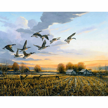 100% 5D Diy Daimond Painting Cross stitch landscape wild duck Diamond Embroidery Full Square/Round Rhinestones Painting M1005 image