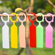 Label Marker Hanging-Tags Garden-Ring Plastic Pot Stake Greenhouse Nursery 100pcs/Lot