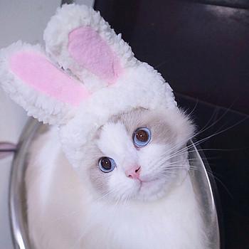 Śmieszne słodkie kostium dla zwierząt Cosplay królik czapka z uszami kapelusz dla kota Halloween Xmas ubrania przebranie z uszami Bunny Party # p9 tanie i dobre opinie ISHOWTIENDA 100 bawełna Stałe Hot sell Paty Accessories 2019 New Arrival Convenience Household products