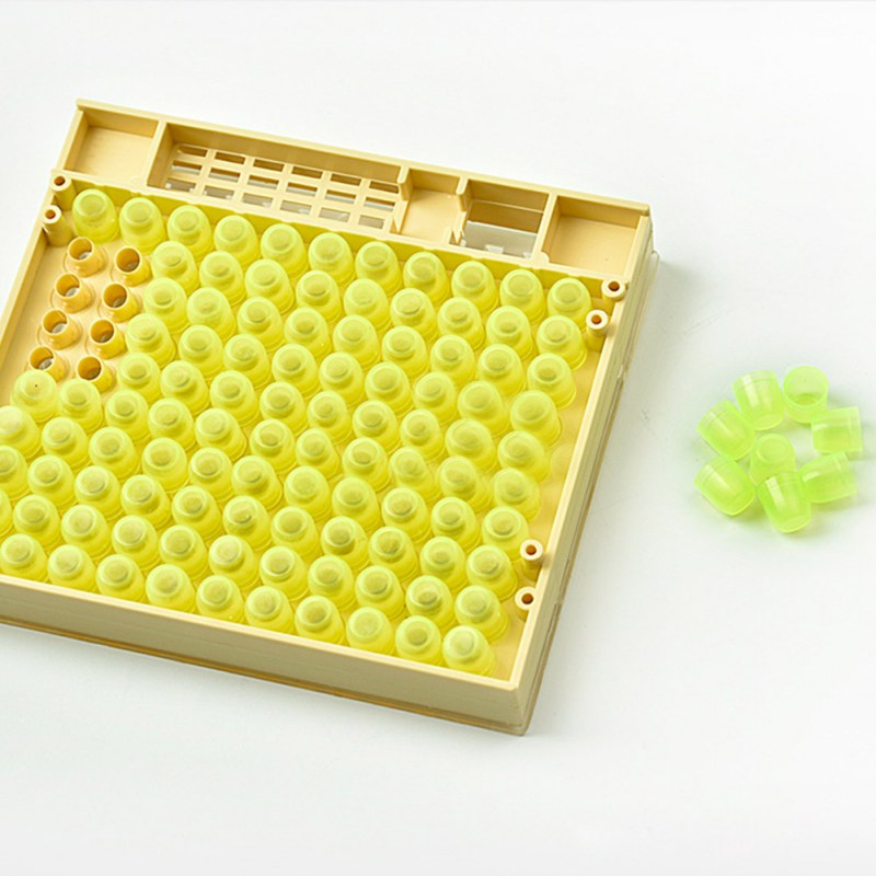 Bee Cage Queen Rearing System Cultivating Box Large Beekeeping Tools Plastic New