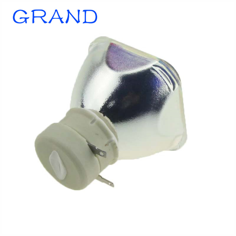 Replacement Lamp Bulb POA-LMP132 For SANYO PLC-XW300 / PLC-XW250 / PLC-XW200 / PLC-XE33 / XW250K /XR201 Projectors